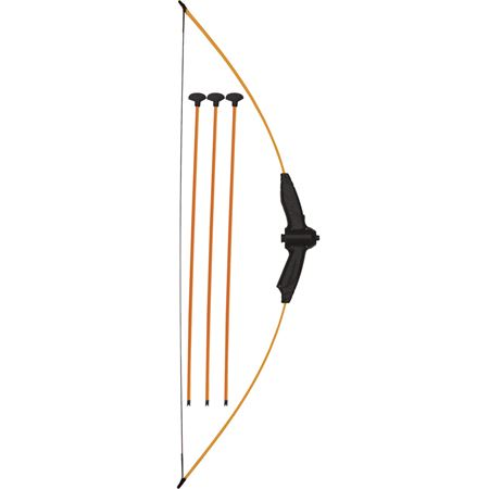 Picture of Bow and Arrows